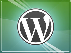 Проблемы с WordPress?