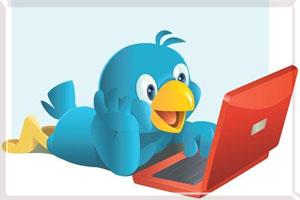 Твиттер и блог.